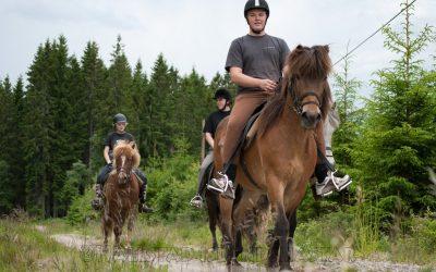 2 timmars tur hos Hällstad Islandshästar AB i Ulricehamn.