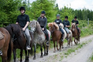 1 1/2 timmars tur hos Hällstad Islandshästar AB i Ulricehamn.