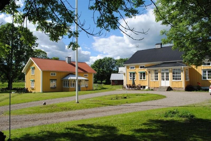 Avelshingst hos Hällstad Islandshästar AB, Älmestad 107, Kronogården www.turridningar.se