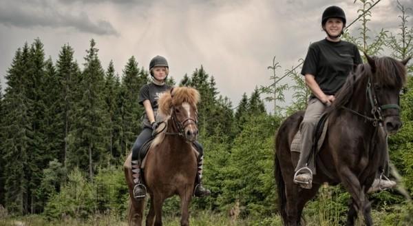 Turridning hos Hällstad Islandshästar AB