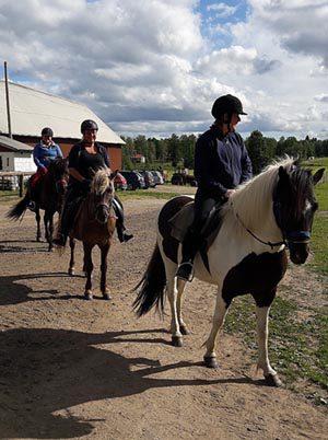 Heldagstur hos Hällstad Islandshästar AB i Ulricehamn.