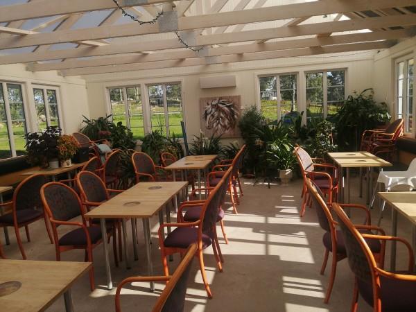 Hällstad Islandshästar café